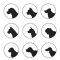 Set of silhouette dogs heads Royalty Free Stock Photo