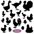 Set of silhouettes of birds on the farm Royalty Free Stock Photo