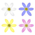 Set of six petal flower vector illustration Royalty Free Stock Photos