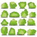 Set of sixteen different cartoon green bushes isolated on white background. Royalty Free Stock Photo