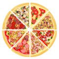 A set of slices of a variety of pizza. Isolated on a white background. Sausage, meat, seafood, fresh and pickled vegetables,