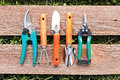 Set of small gardening tools on wood board Stock Photo
