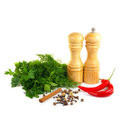 Set of spice Royalty Free Stock Photo