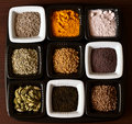 Set of spices Royalty Free Stock Photography