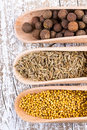 Set of spices cumin allspice and mustard in a spoons spice Stock Photo
