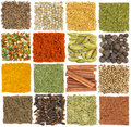 Set of spices isolated on white background Stock Images