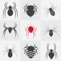 Set of spider icons on gray background Stock Images