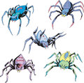 Set of spider tattoos Stock Image