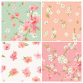 Set of Spring Blossom Flowers Background