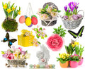 Set of spring flowers easter eggs butterfly decorations isolated on white background Stock Images