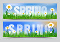 Set of spring web banners with green grass, white flowers