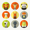 Set of stylized animal avatar in flat style bright colors Stock Photos