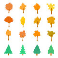 Set of stylized flat autumn tree icons, vector illustration, iso