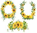Set of 3 sunflower arrangements,wreaths and bouquet Royalty Free Stock Photo