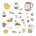 Set tea party objects. Collection with hand drawn kettle,jar,lemon,leaf,cup,ginger,cinnamon. vector colorful