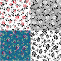 Set templates with floral patterns a Royalty Free Stock Photo