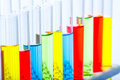 Set of test lab tubes with color liquid on stand Royalty Free Stock Photo