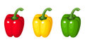 Set of three bell peppers illustration red yellow and green isolated on a white background Stock Photography