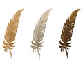 Set of three feathers isolated on a white background Royalty Free Stock Images