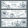 Set of three horizontal banners with beautiful lotus flowers and