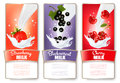 Set of three labels of berries in milk splashes.