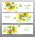 Set of three nature vector banners with floral elements Royalty Free Stock Photo