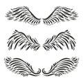Set of three vector decorative angel or bird wings design - illu Royalty Free Stock Photo