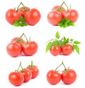 Set tomato fruits Royalty Free Stock Image