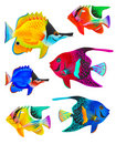 Set of toy fishes Stock Image