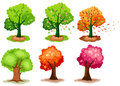Set of tree Stock Photography