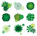 Set of Tree Icons for Garden Plan Design Royalty Free Stock Photo