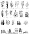 A set of tree silhouettes , for architectural or landscape design Royalty Free Stock Photo