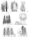 A set of tree silhouettes for  landscape design Royalty Free Stock Photo
