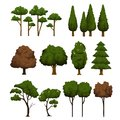 Set of trees for landscape on white background vector illustration Royalty Free Stock Image