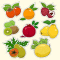 Set of Tropical Fruit Stickers