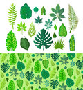Set of Tropical Leaves. Collection  Green Leafs. Royalty Free Stock Photo