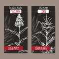 Set of two vintage labels with Sorghum bicolor and Corn aka Maize or Zea mays sketch on black. Cereal plants collection.
