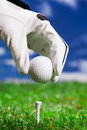 Set up the golf ball! Royalty Free Stock Photos