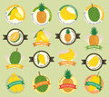 Set of various fresh fruit and vegetable premium quality tag