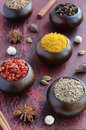 Set of various indian spices on rusted wooden background cumin chili yellow nut spicy mix coriander white black and green cardamon Royalty Free Stock Image