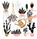 Set of various  indoor potted plants in boho interior . Great for gardening magazines , flower store. Vector illustration. Royalty Free Stock Photo