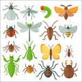 Set of various insects: butterfly, fly, beetle, dragonfly, spider, bee and ladybug. Royalty Free Stock Photo