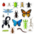 Set of Various Insects Design Flat Royalty Free Stock Photo