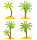 Set of various palm trees. Objects isolated. Vecto Royalty Free Stock Image