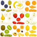 Set of various whole and sliced fruit. Vector illustration.