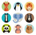 Set of vector animal icons in round buttons with the heads a roe deer penguin tiger horse elephant dog panda monkey and bear Royalty Free Stock Image