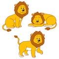 Set of vector animals (lions)