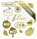 Set of vector bio, eco, organic elements Stock Photos