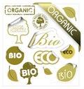Set of vector bio, eco, organic elements Royalty Free Stock Photo