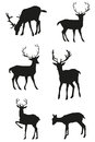Set of vector black deers